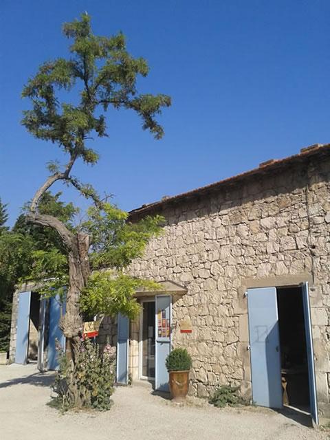 Domaine de Suriane (Saint-Chamas)
